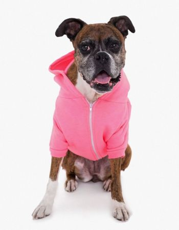 American Apparel Dog Flex Fleece Hood Thumbnail
