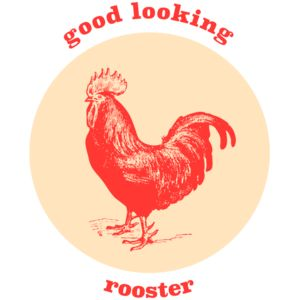 good looking rooster Thumbnail